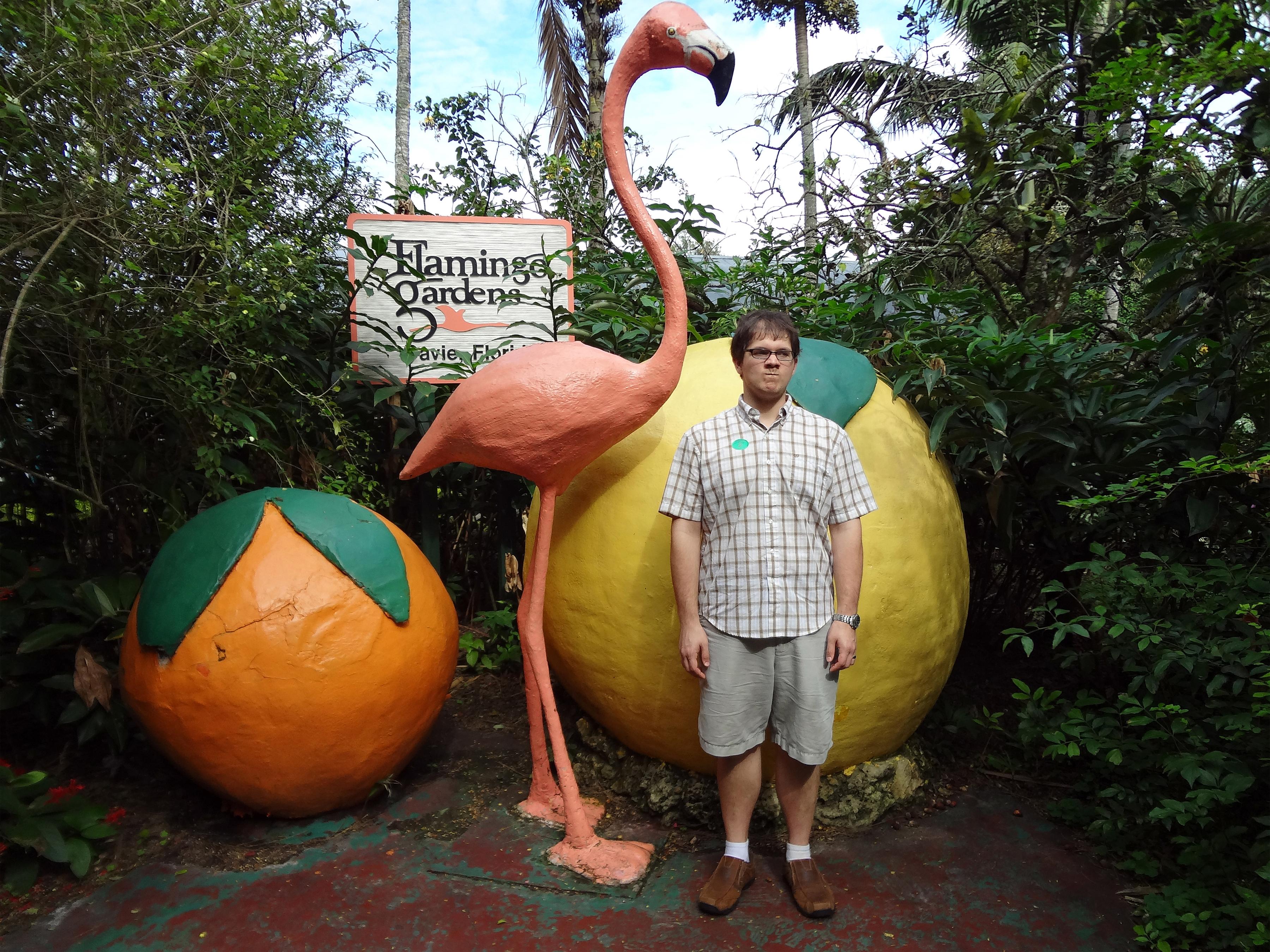 Flamingo Gardens Fort Lauderdale Garden Ftempo