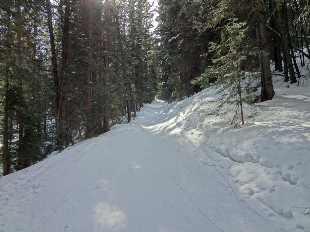 Billy Woods Trail
