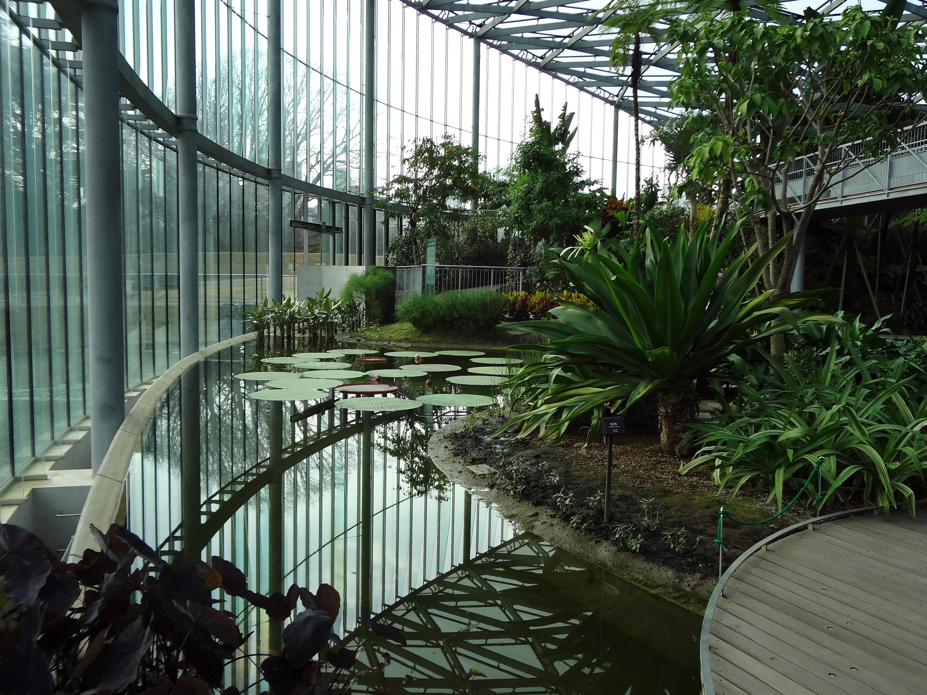 22+Shinjuku Gyoen Greenhouse