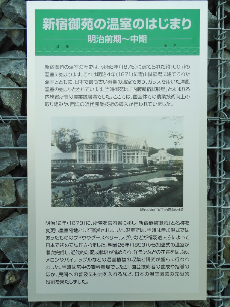 The History of Shinjuku Gyoen greenhouse