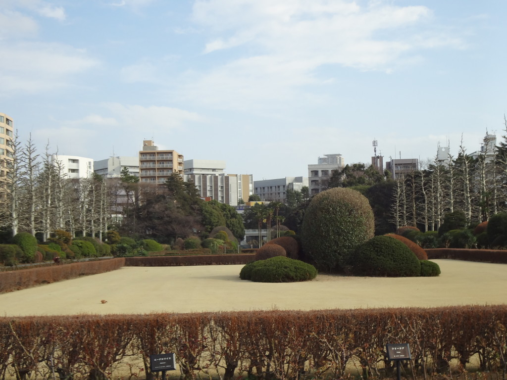 Shinjuku Gyoen rose garden and topiary area