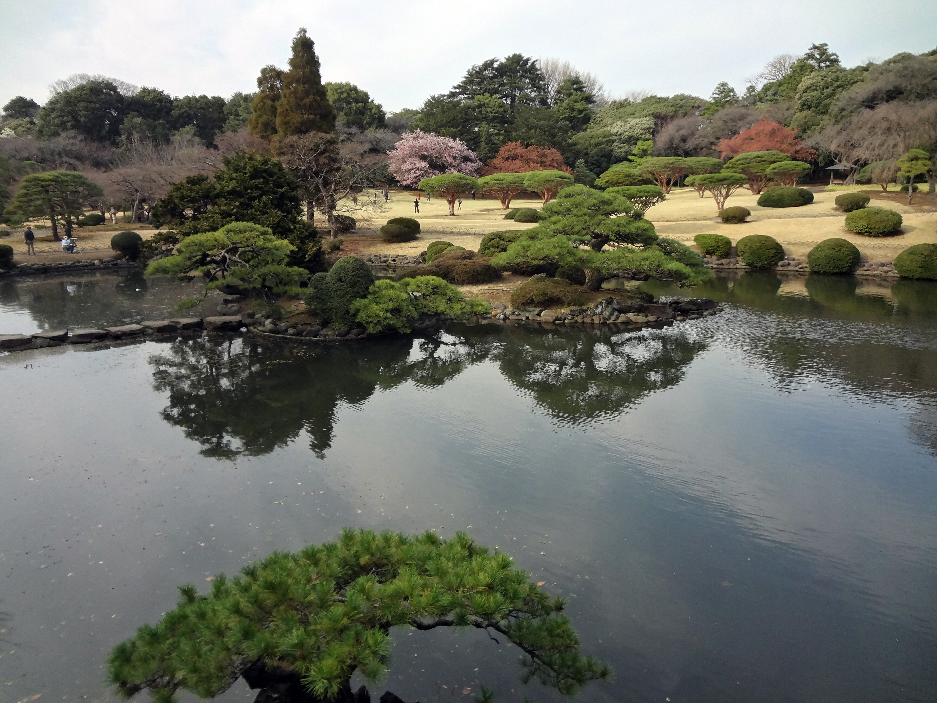 The japanese formal garden seen from the taiwan pavilion for Formal japanese garden