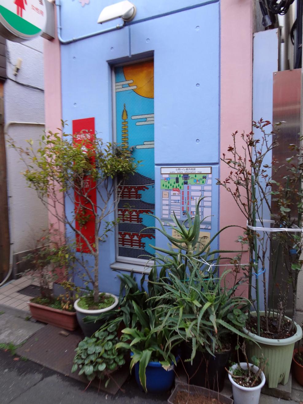 Carefully tended compact garden